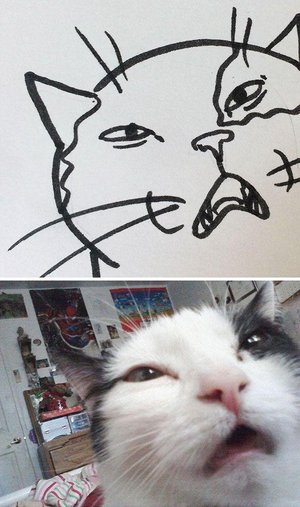 Мне плохо картинки с котиками, днем