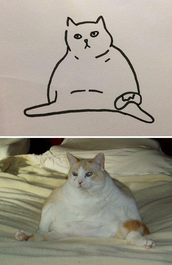 Мне плохо картинки с котиками