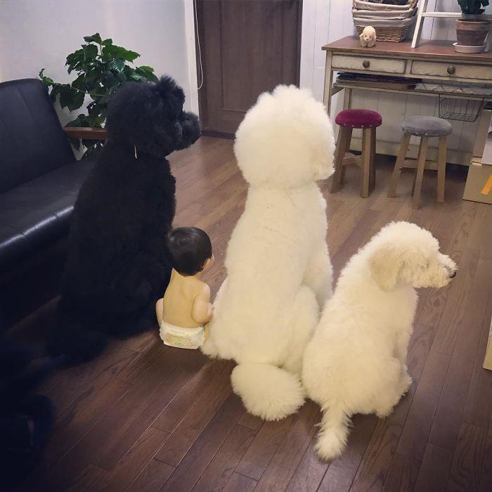 японка с собакой