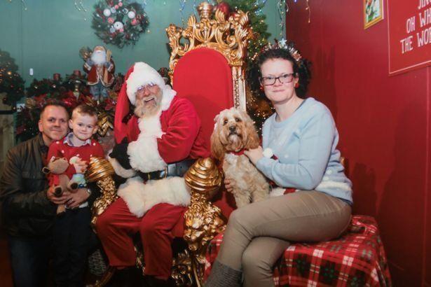 Завидуйте молча: собака получила на Рождество 68 подарков на 1500 долларов - фото 360524
