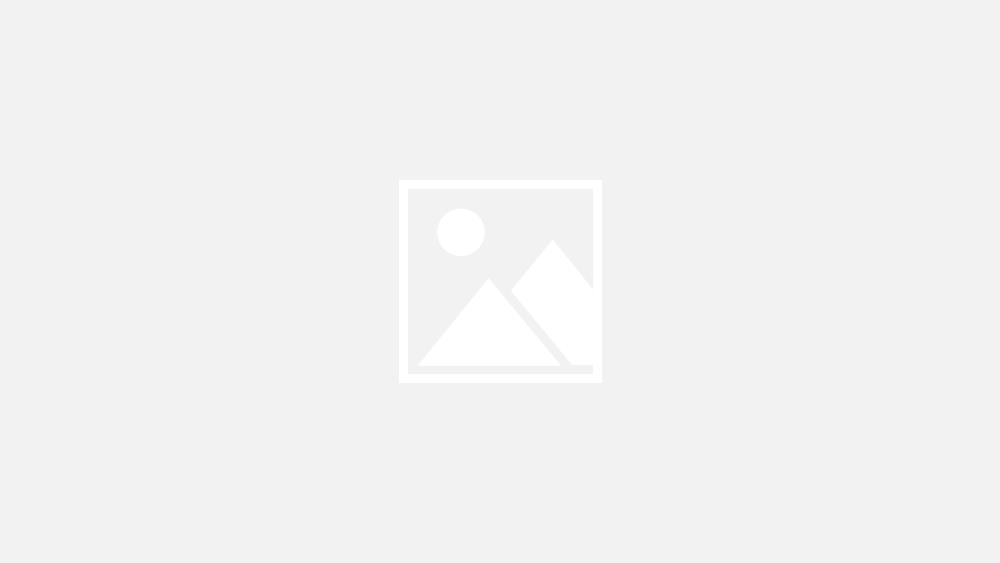Оскар 2018: найкрасивіші наряди на червоній доріжці - фото 373165