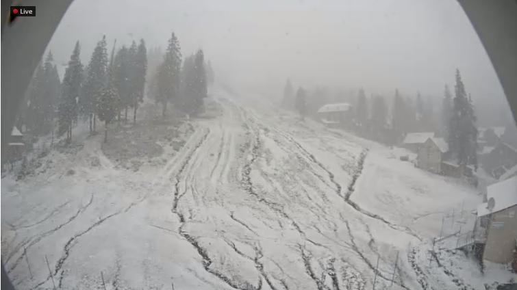 Ну привіт, зима: у Карпатах випав перший сніг - фото 404988