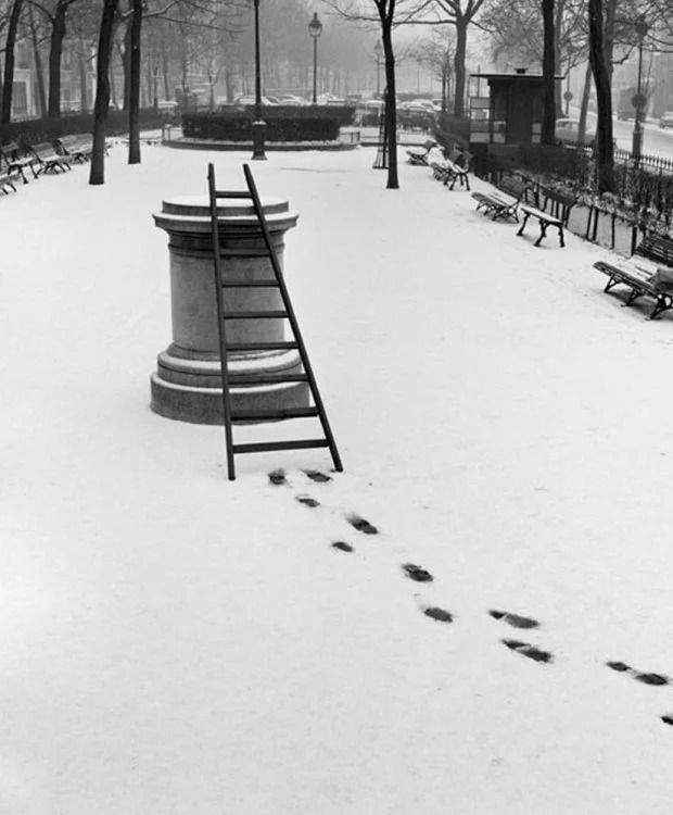Французский фотограф, который мастерски ловит юмор в объективе, поразил мир - фото 425231