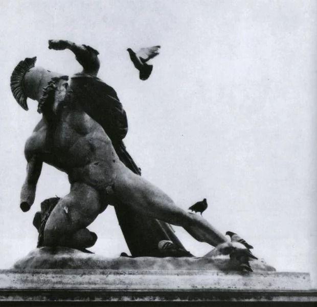Французский фотограф, который мастерски ловит юмор в объективе, поразил мир - фото 425234