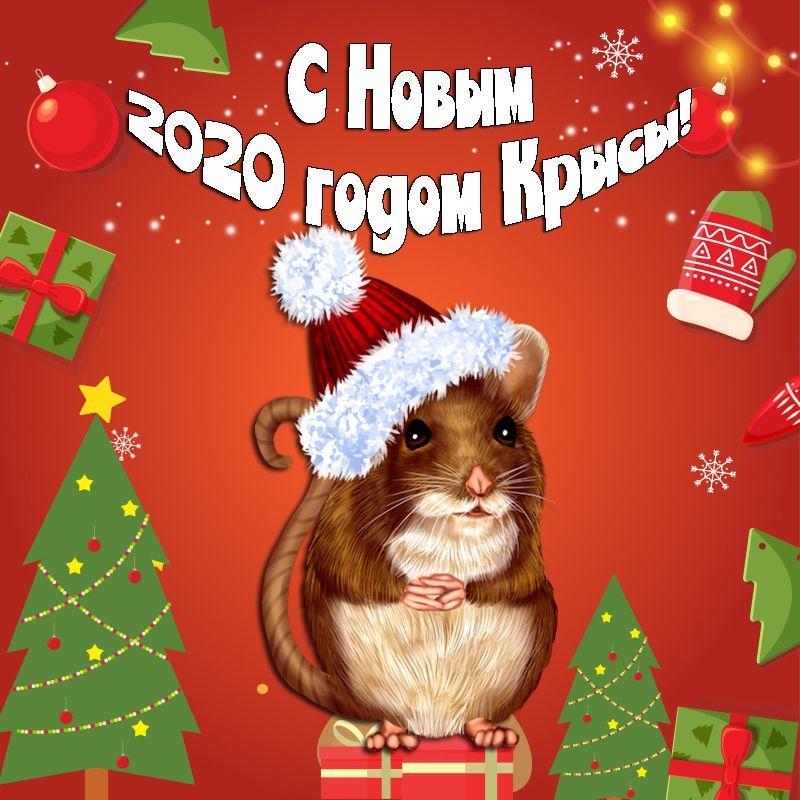 Тинькофф банк белгород кредит