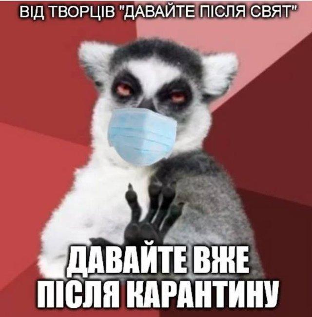 Без паніки: люди рятуються від коронавірусу дотепними мемами - фото 471930