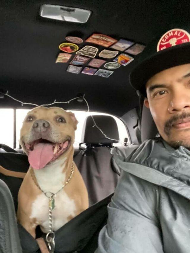 Люди запустили челлендж и делятся прикольными выражениями мордочек своих собак - фото 502710